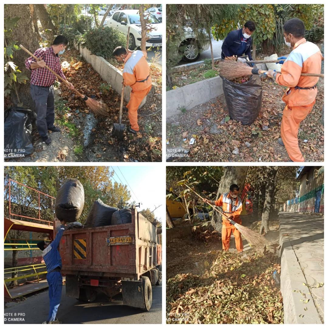نظافت و لایروبی کلی جوی های آب سطح شهر و جمع آوری برگ های خشک از جوی ها و معابر